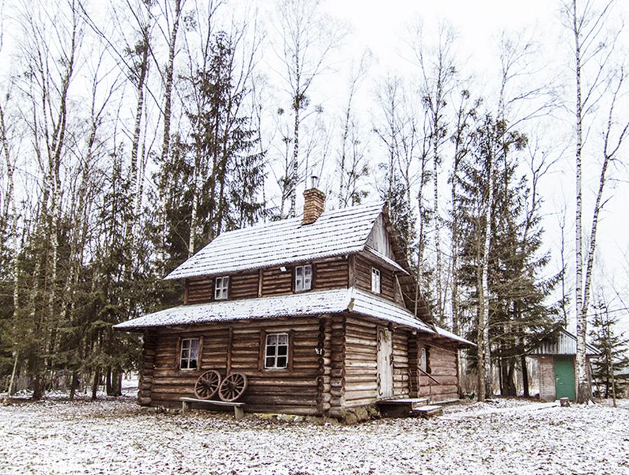 domek w lesie do wynajęcia