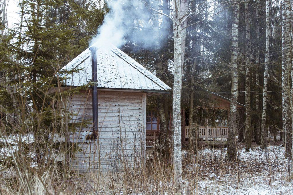 wynajem domku w lesie