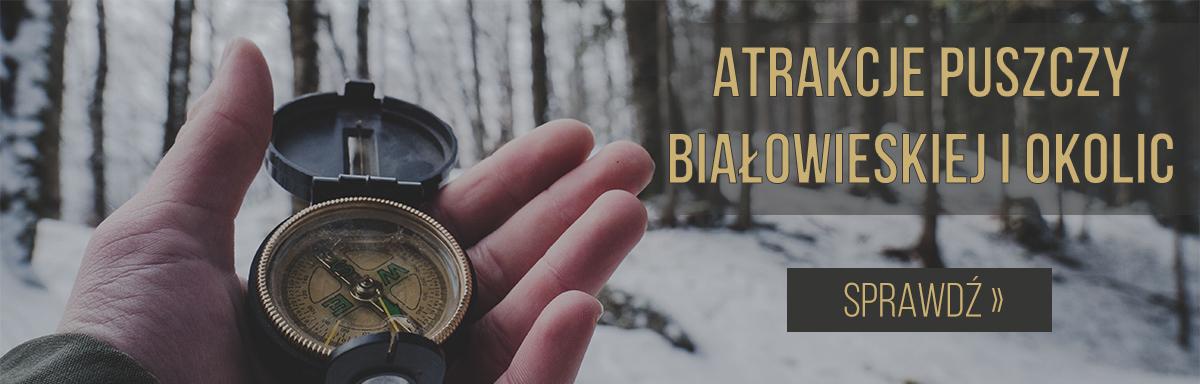atrakcje puszczy białowieskiej i podlasia