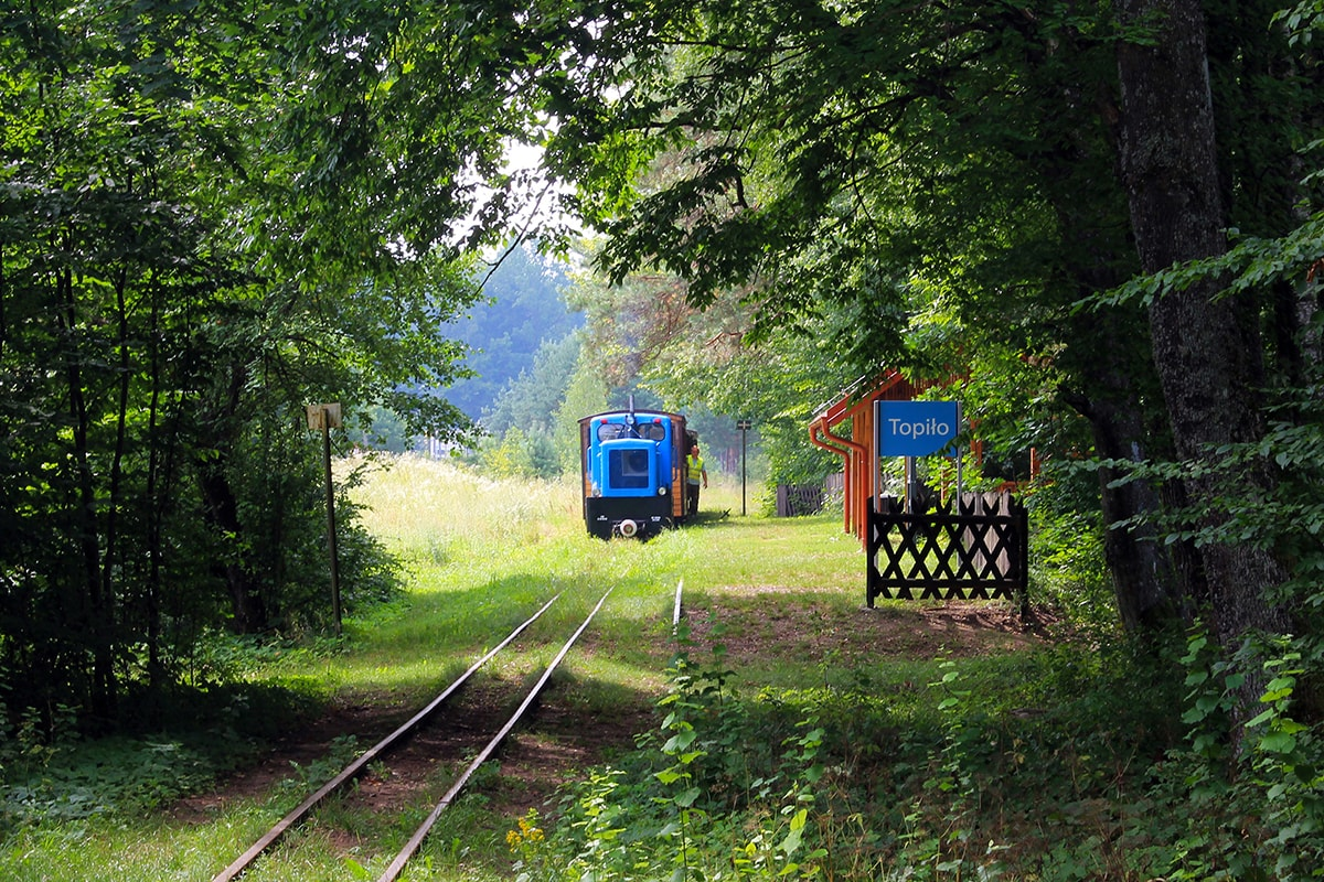 Kolejka wąskotorowa puszcza Białowieska